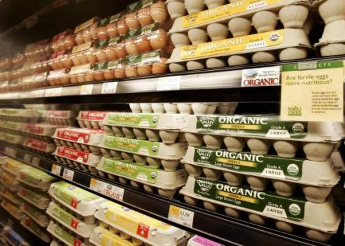 102970158-organic-eggs-on-the-shelves-05-january-2006-at-the-crop-promo-mediumlarge